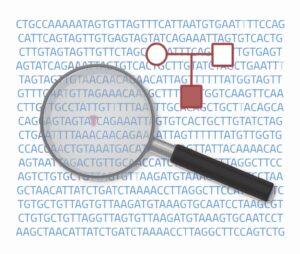 estudios genéticos basados en tríos