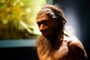 neandertal COVID19