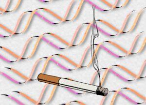 genética tabaco
