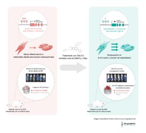 epigenética mieloma múltiple