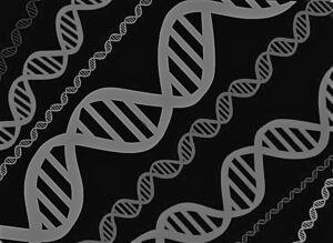 genética del suicidio