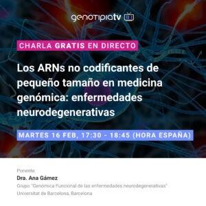 ARNs no codificantes