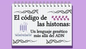 El código de las histonas: un lenguaje genético más allá del ADN