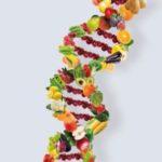 Logo del grupo Detoxificación Hepática y Nutrigenética