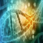Logo del grupo Experto Universitario en Genética Médica y Genómica